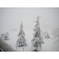 La nevicata dell'inverno 2012