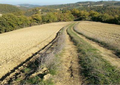 Sentiero sul Monte Peglia